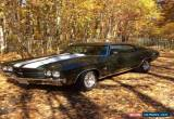 Classic Chevrolet: Chevelle SS for Sale