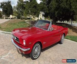 Classic 1965 Ford Mustang SPORT CONVERTIBLE for Sale