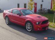 2008 Ford Mustang GT-500 for Sale