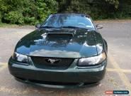 2001 Ford Mustang Bullitt for Sale