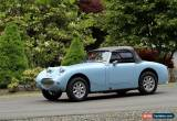 Classic Austin Healey: Sprite for Sale