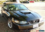 2001 Ford Mustang GT for Sale