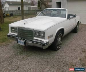 Classic Cadillac: Eldorado for Sale