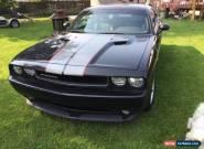 Dodge: Challenger for Sale