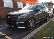 Mercedes-Benz: M-Class Designo for Sale