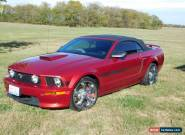 2007 Ford Mustang GT/CS for Sale