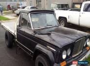 1967 Jeep gladiator j3000 1967 not cj j10 j20 for Sale