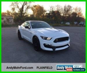 Classic 2018 Ford Mustang Shelby for Sale
