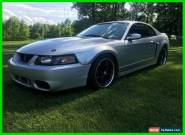2003 Ford Mustang COBRA SVT for Sale