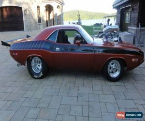Classic 1970 Dodge Challenger for Sale