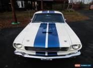 1965 Ford Mustang SHELBY RECREATION for Sale