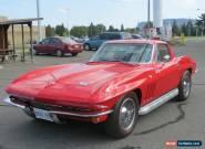 1966 Chevrolet Corvette Sting Ray for Sale
