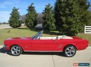 1966 Ford Mustang Convertible 4-speed for Sale