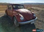 1969 Volkswagen Beetle - Classic for Sale