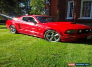 Ford: Mustang GT for Sale