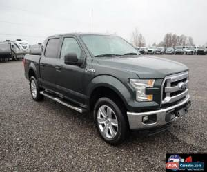Classic 2015 Ford F-150 4x4 SuperCrew Cab Styleside 5.5 ft. box 145 in. WB XLT for Sale