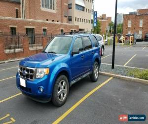 Classic 2011 Ford Escape for Sale