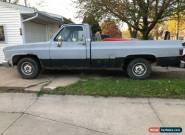 1981 Chevrolet C-10 for Sale