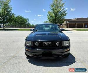 Classic 2009 Ford Mustang Base for Sale