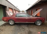 1966 Ford Mustang for Sale
