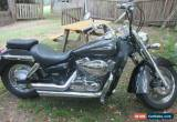 Classic Honda Shadow VT400 for Sale