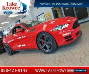 Classic 2019 Ford Mustang for Sale