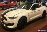 Classic 2019 Ford Mustang SHELBY GT350 for Sale