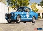 1966 Shelby GT-350 Race Car for Sale