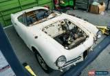 Classic 1963 Alfa Romeo Spider Giulietta for Sale