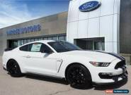 2019 Ford Mustang GT350 for Sale