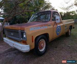 Classic 1974 Chev c20  for Sale