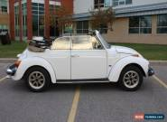 Volkswagen: Beetle - Classic Karmann for Sale