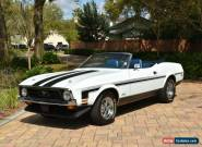 1971 Ford Mustang for Sale