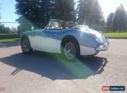 1965 Austin Healey 3000 MK III for Sale