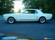 Ford: Mustang coupe for Sale