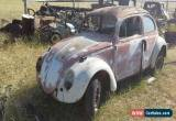 Classic VW Beetle 1964 for Sale