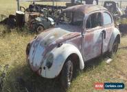 VW Beetle 1964 for Sale