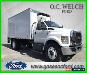 Classic 2019 Ford F-650SD for Sale