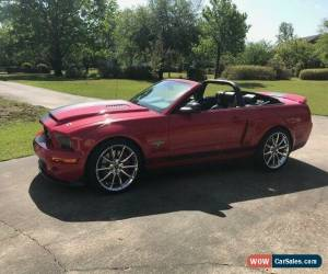 Classic 2007 Ford Mustang Super Snake for Sale