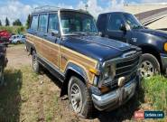 1991 Jeep Grand Wagoneer for Sale