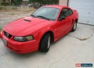 2001 Ford Mustang for Sale