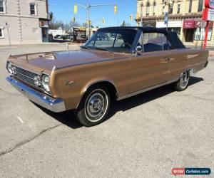 Classic 1966 Plymouth Satellite Convertible for Sale