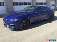 2016 Ford Mustang Shelby GT 350 for Sale