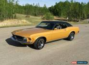Ford: Mustang Grande for Sale