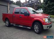 2009 Ford F-150 XTR for Sale