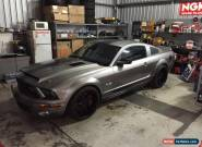 Ford GT500 SUPER SNAKE Shelby Mustang 2008 super charged 5.4L kennebell 3.6 for Sale