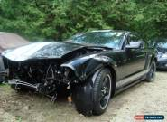 2007 Ford Mustang Shelby for Sale