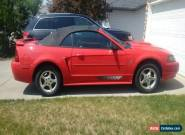 Ford: Mustang Pony Edition for Sale